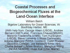 Coastal Processes and Biogeochemical Fluxes at the LandOcean