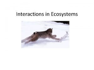 Interactions in Ecosystems SNC 1 DI Ecosystem Interactions