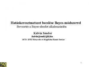 Hatskeresztmetszet becslse Bayesmdszerrel Bevezets a Bayeselmlet alkalmazsba Klvin