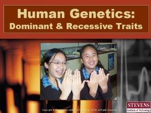 Human Genetics Dominant Recessive Traits Copyright 2004 Stevens