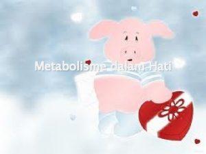 Metabolisme dalam Hati Metabolisme merupakan proses pengubahan struktur