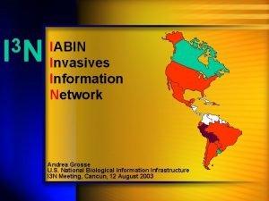 3 IN IABIN Invasives Information Network Andrea Grosse