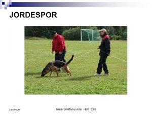 JORDESPOR Jordespor Norsk Schferhun Klub HBU 2008 INNLEDNING