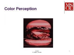 Color Perception CS321 Dr Mark L Hornick 1