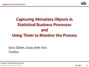 TURKISH STATISTICAL INSTITUTE Capturing Metadata Objects in Statistical