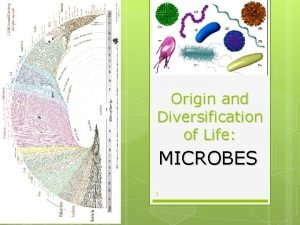 342021 Origin and Diversification of Life MICROBES 1