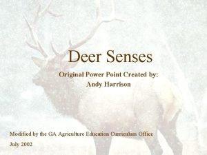 Deer Senses Original Power Point Created by Andy