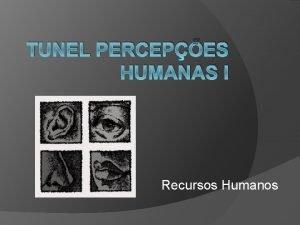 TUNEL PERCEPES HUMANAS I Recursos Humanos Objetivo geral