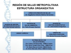 REGIN DE SALUD METROPOLITANA ESTRUCTURA ORGANIZATIVA DIRECCIN REGIN