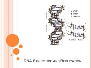 DNA STRUCTURE AND REPLICATION DISCOVERY OF DNA has