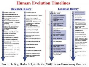 Human Evolution Timelines Research History Evolution History Source