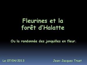 Fleurines et la fort dHalatte Ou la randonne
