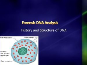 Forensic DNA Analysis History and Structure of DNA