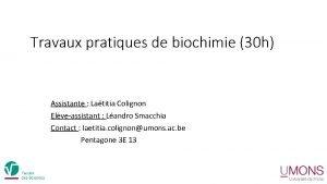 Travaux pratiques de biochimie 30 h Assistante Latitia
