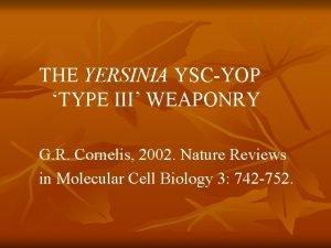 THE YERSINIA YSCYOP TYPE III WEAPONRY G R