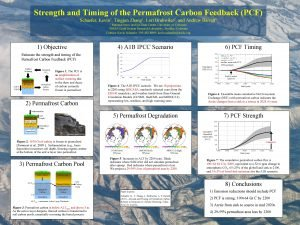Strength and Timing of the Permafrost Carbon Feedback