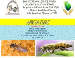 APICULTURE PRESENTED BY DR M GAYATHRI ASSISTANT PROFESSOR
