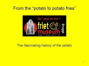 From the potato to potato fries The fascinating