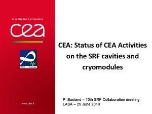 CEA Status of CEA Activities on the SRF
