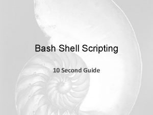 Bash Shell Scripting 10 Second Guide Common environment