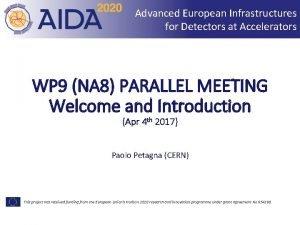 Advanced European Infrastructures for Detectors at Accelerators WP