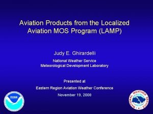 Aviation Products from the Localized Aviation MOS Program