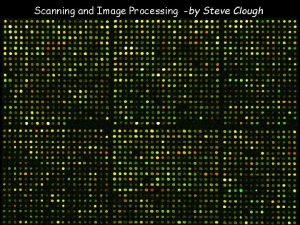 Scanning and Image Processing by Steve Clough c