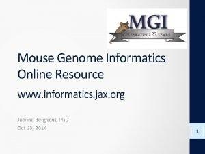Mouse Genome Informatics Online Resource www informatics jax