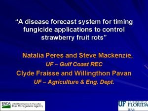 A disease forecast system for timing fungicide applications