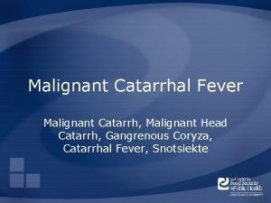 Malignant Catarrhal Fever Malignant Catarrh Malignant Head Catarrh