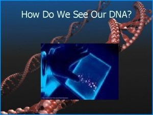 How Do We See Our DNA Horizontal Agarose