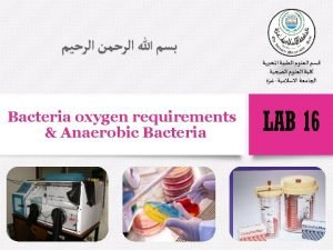 Bacteria oxygen requirements Anaerobic Bacteria Introduction v Bacteria