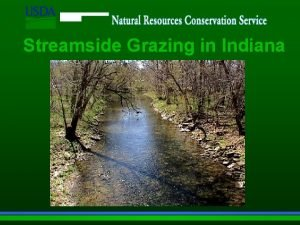 Streamside Grazing in Indiana Indiana Streams Are a