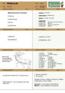 Bereich Wildkunde Thema Schalenwild Wildkunde Schalenwild Datum Autoren