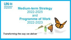Mediumterm Strategy 2022 2025 and Programme of Work