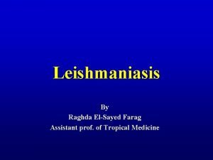 Leishmaniasis By Raghda ElSayed Farag Assistant prof of
