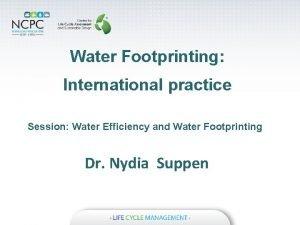 Water Footprinting International practice Session Water Efficiency and