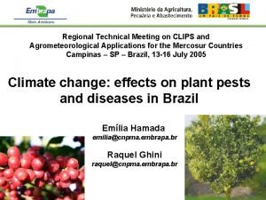 Regional Technical Meeting on CLIPS and Agrometeorological Applications