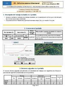 ICE Perodo del Informe 20 Informe avance bisemanal