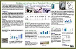 Abstract Flooding and Sea Level Rise at Waterbird