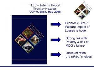 TEEB Interim Report Three Key Messages COP9 Bonn
