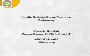 Eswatini Sustainability and Transition Cofinancing Sithembiso Matsebula Program