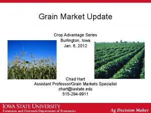 Grain Market Update Crop Advantage Series Burlington Iowa