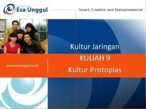Kultur Jaringan KULIAH 9 Kultur Protoplas KULTUR SEL