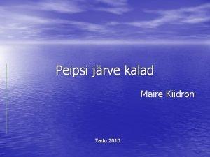 Peipsi jrve kalad Maire Kiidron Tartu 2010 Peipsi