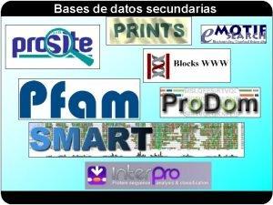 Bases de datos secundarias Bases de datos secundarias