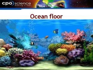 Ocean floor The ocean floor Many of the