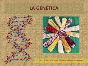 LA GENTICA Ms A Lic Enrique Guillermo Zepeda