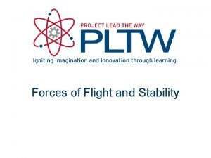 Forces of Flight and Stability Forces on an