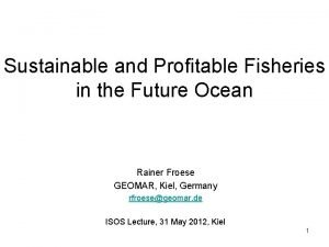 Sustainable and Profitable Fisheries in the Future Ocean